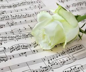 Image : Rose blanche sur une partition.